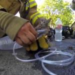 Watch as a Fireman saves a Cat's Life